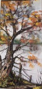arbre-pres-de-lac